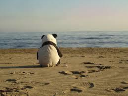 lonelypanda