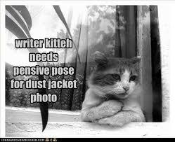 pensive writer kitteh
