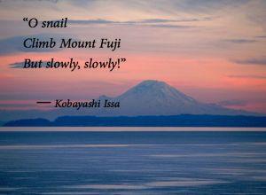 zen-issa-o-snail-climb-mount-fuji